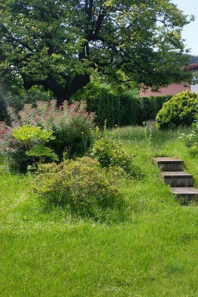 sempreverde_giardini-13