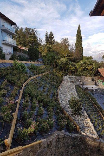 sempreverde_giardini-24